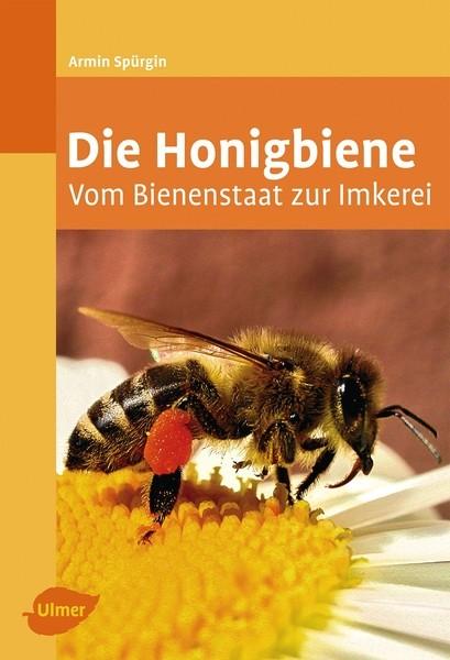 Die Honigbiene, Armin Spürgin
